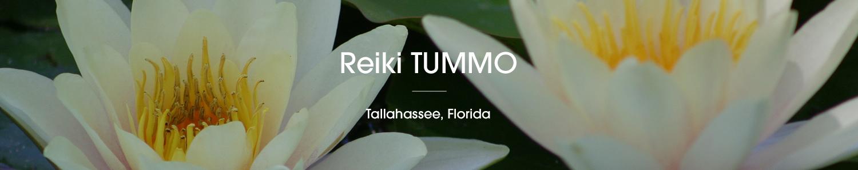 Reiki TUMMO Tallahassee